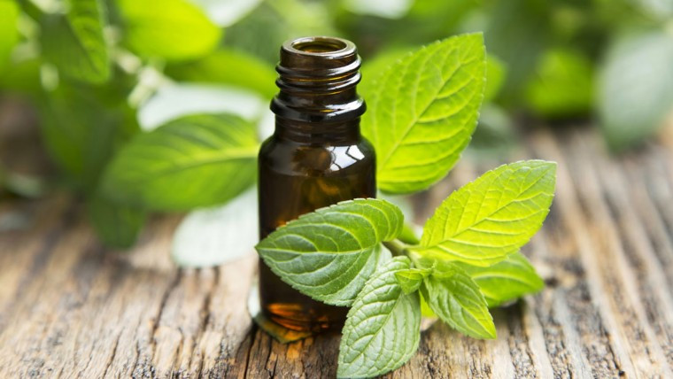 rodent-sheriff-peppermint-oil